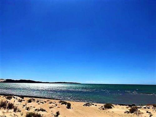 Beachfront Lot Isla Conchilla Islas : Puerto Penasco : Mexico