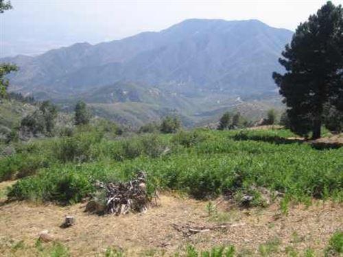 Beautiful Developed Land : Running Springs : San Bernardino County : California