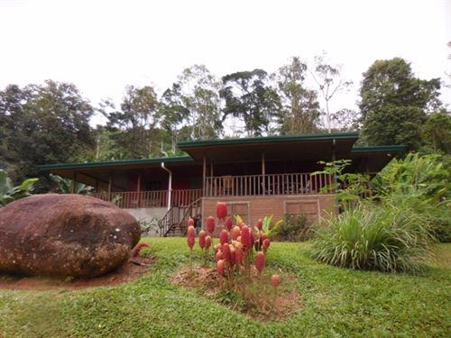 Secluded 12 Acre Farm- Newer Home : Paso Marcos De Turrialba : Costa Rica