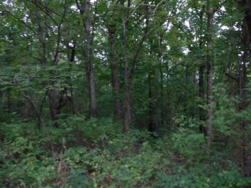 5.30 Ac Totally Wooded, Mtn Views : Jamestown : Fentress County : Tennessee