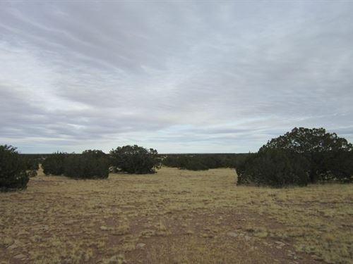 5 Acres In Holbrook, AZ : Holbrook : Navajo County : Arizona