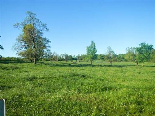 .15 Acres In Carthage, AR : Carthage : Dallas County : Arkansas