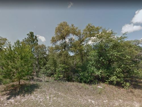 Citrus County, Fl $85,000 : Citrus Springs : Citrus County : Florida