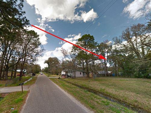 Quarter Acre In Jacksonville : Jacksonville : Duval County : Florida