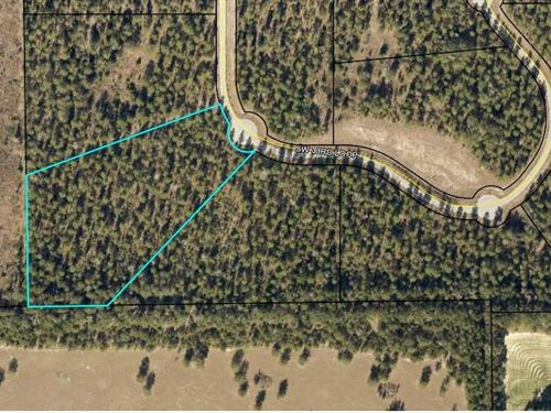 Beautiful Wooded 5 Acre Lot Paved : Jasper : Hamilton County : Florida