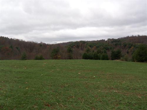 Private Building Lot Blue Ridge : Floyd : Virginia