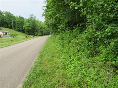 Vacant Land Linden TN With Springs : Linden : Perry County : Tennessee