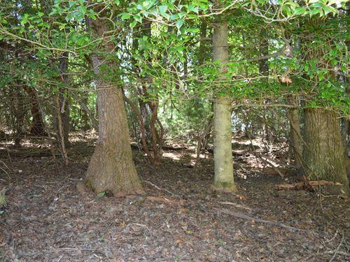 Building Lot High Meadows Estates : Roaring Gap : Alleghany County : North Carolina