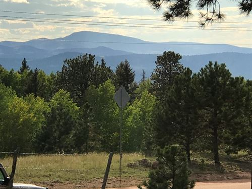 3 Acres Well, Septic, Power : Divide : Teller County : Colorado