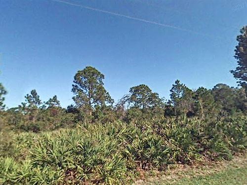 1.33 Acres In Okeechobee, FL : Okeechobee : Osceola County : Florida
