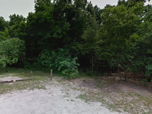 .25 Acres In Apopka, FL : Apopka : Orange County : Florida
