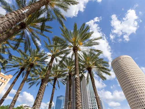 .11 Acres In Tampa, FL : Tampa : Hillsborough County : Florida