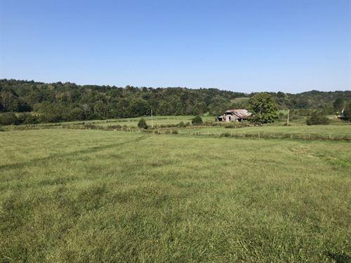 Farm, Hunting, Pond, Barn, Metcalfe : Edmonton : Metcalfe County : Kentucky