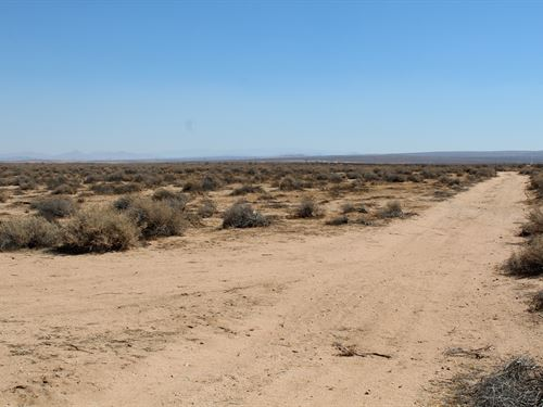 20 Acres Of Man Land : Kramer Junction : San Bernardino County : California