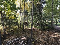 9,290 Sq, Ft, Residential Lot, Si : Anchorage : Anchorage Borough : Alaska