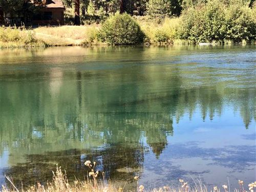 Williamson River Blue Ribbon Trout : Chiloquin : Klamath County : Oregon