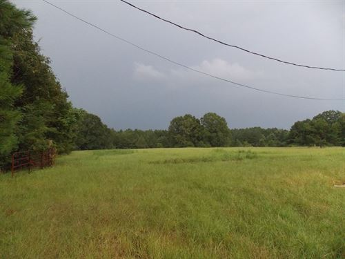Land 4 Acres Lincoln County Bogue : Bogue Chitto : Lincoln County : Mississippi