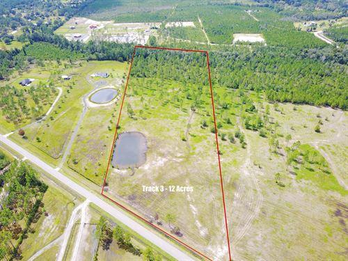 Timber Ridge, Tract 3 : Bryceville : Nassau County : Florida