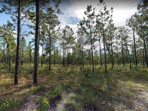 Clay County, Fl $35,000 : Keystone Heights : Clay County : Florida
