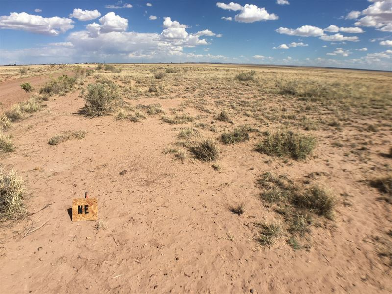 5 Acres In Holbrook, AZ : Holbrook : Navajo County : Arizona