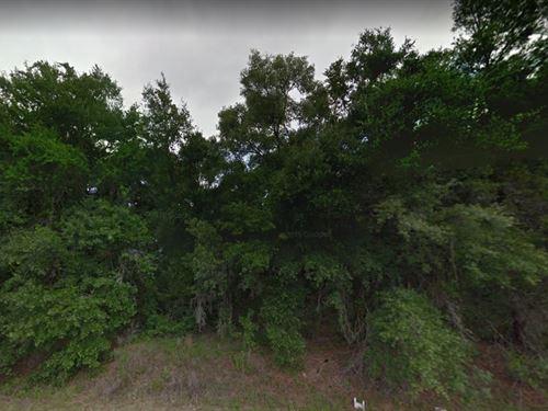 Putnam County, Fl $19,900 : Satsuma : Putnam County : Georgia