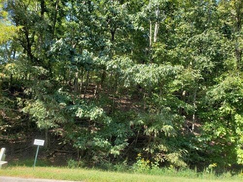 Cherokee Lake Building Lot : Mooresburg : Hawkins County : Tennessee