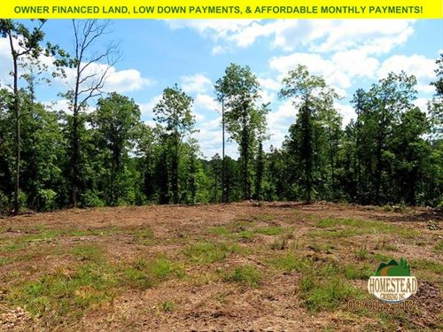 Private Driveway, Large Clearing : Houston : Texas County : Missouri