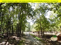 Walking Distance To National Forest : Vanzant : Douglas County : Missouri