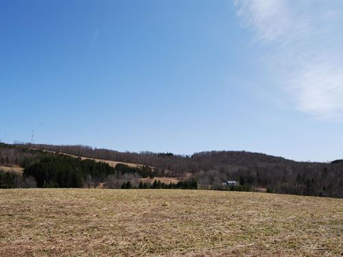19.9 Acres Close To Cooperstown : Burlington Flats : Otsego County : New York