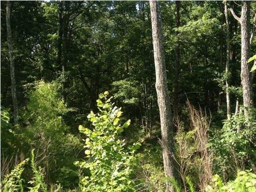 4.38+/- Acres Usable Land : South Pittsburg : Marion County : Tennessee