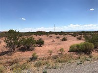 Over an Acre in La Luz, New Mexico : La Luz : Otero County : New Mexico