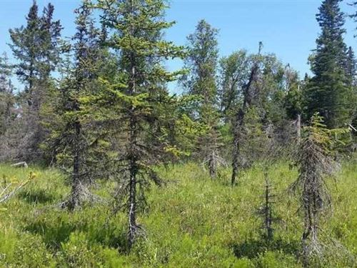 11 Acres in Moose Point, Perfect : Nikiski : Kenai Peninsula Borough : Alaska