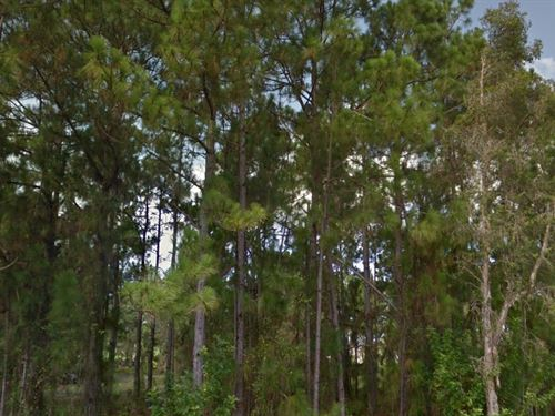Lee County, Fl $30,500 Negotiable : Lehigh Acres : Lee County : Florida
