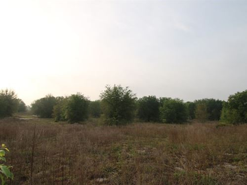 Farm Land Gilchrest Farms, Bell : Bell : Gilchrist County : Florida