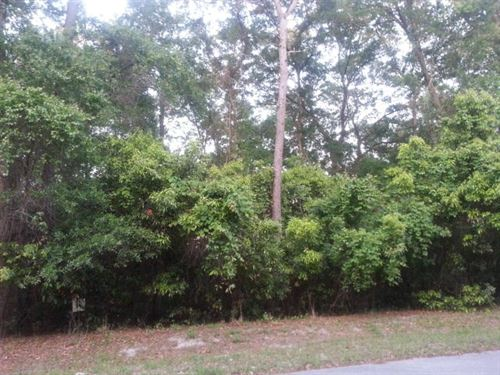 Lot, Buck Bay S/D, Chiefland : Chiefland : Levy County : Florida