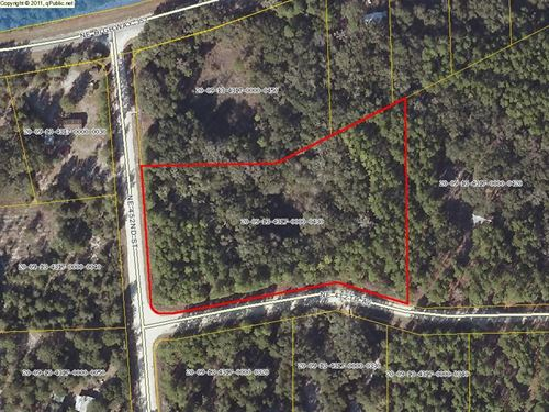 Old Town Florida Vacant Land : Old Town : Dixie County : Florida
