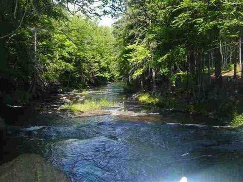 Parcel A Off Salmon Rd, Mls 1111350 : L'anse : Baraga County : Michigan