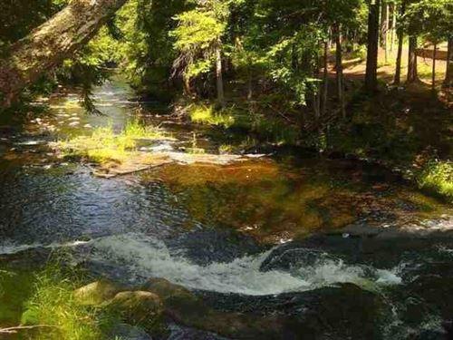 Parcel B Off Salmon Rd, Mls 1111351 : L'anse : Baraga County : Michigan