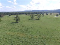 11.86 Ac Mini Farm : Ashville : Saint Clair County : Alabama