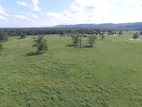 11.86 Ac Mini Farm : Ashville : Saint Clair County : Alabama