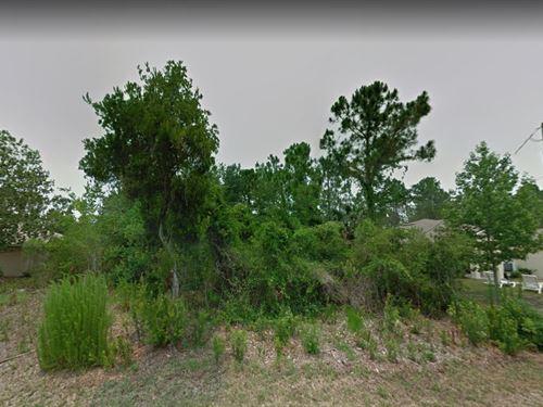 Flagler County, Fl $50,000 : Palm Coast : Flagler County : Florida