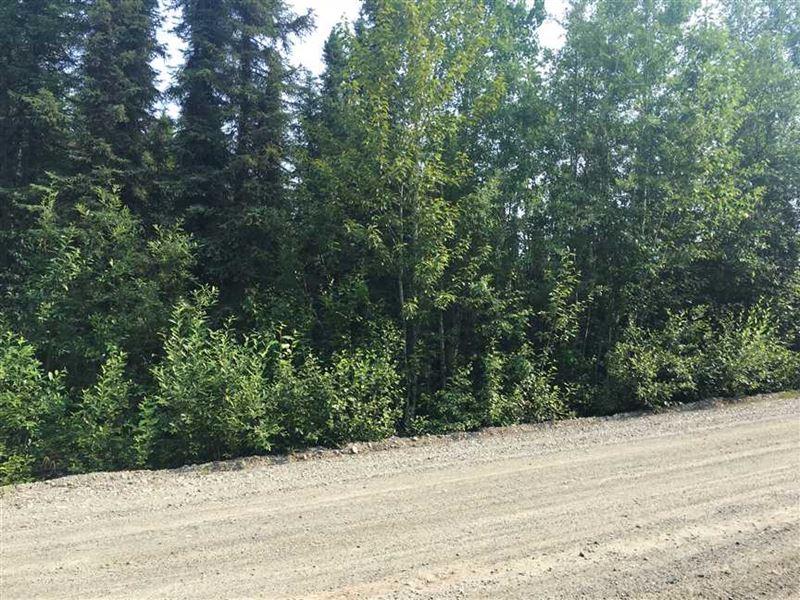 Level Dry Building Lot at Big Lake : Big Lake : Matanuska-Susitna Borough : Alaska