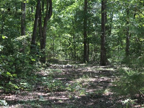5.49 Acres With No Restrictions : Mountain View : Stone County : Arkansas