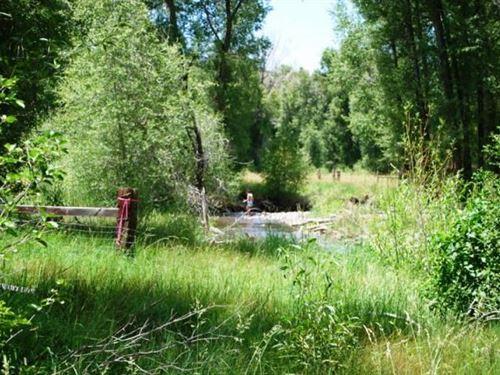 River Frontage Land Cimarron : Cimarron : Montrose County : Colorado