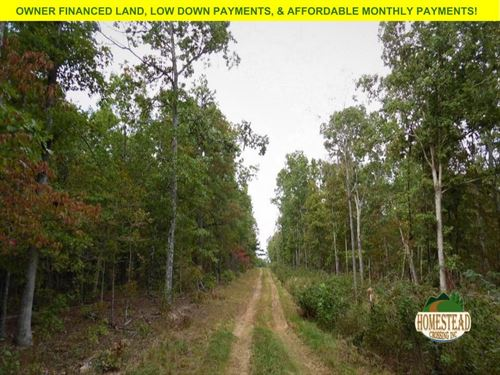 Homestead Hideaway : Birch Tree : Shannon County : Missouri