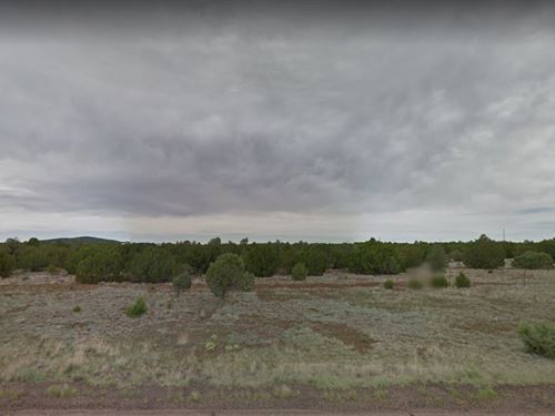Great Lot East Of Show Low For You : Show Low : Apache County : Arizona