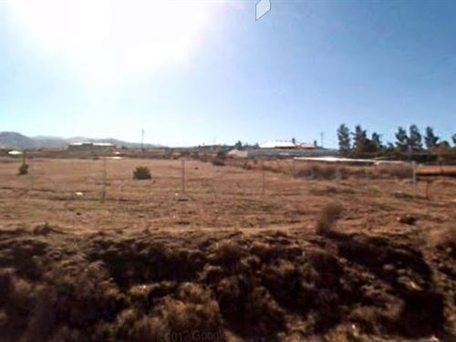 Livable 0.57 Acre In Apple Valley : Apple Valley : San Bernardino County : California