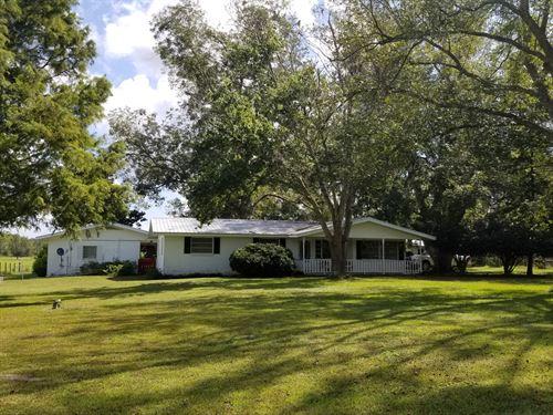 Florida Farm Land High Springs Fl : High Springs : Alachua County : Florida