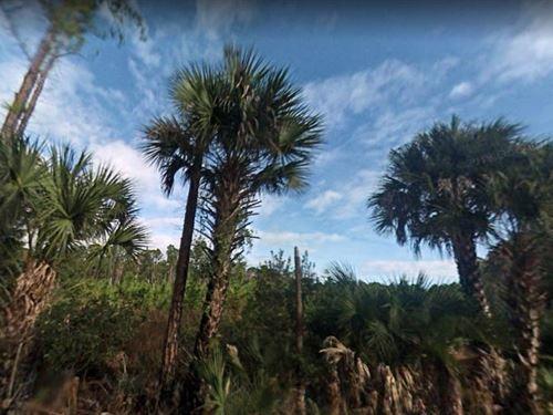 Volusia County, Fl $15,000 : New Smyrna Beach : Volusia County : Florida