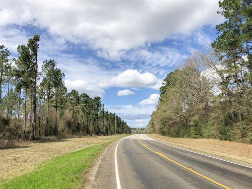 11.59 Ac Kittrell Acres : Trinity : Walker County : Texas